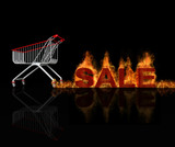 The speedy moving shopping cart with hot sale title