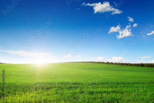 Fototapeten,ackerbau,hintergrund,wolkenschleier,tage