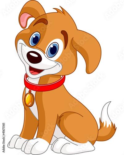 Fototapeta Cute Dog