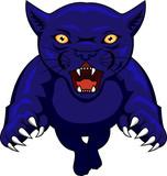 Panther Attacking