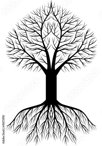 Tree silhouette background - 41675910