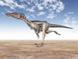 Dinosaur Velociraptor