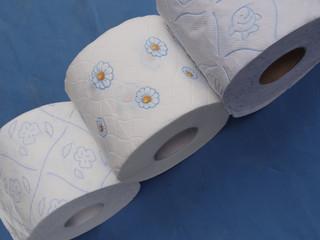 Verdauung und Toilettenpapier