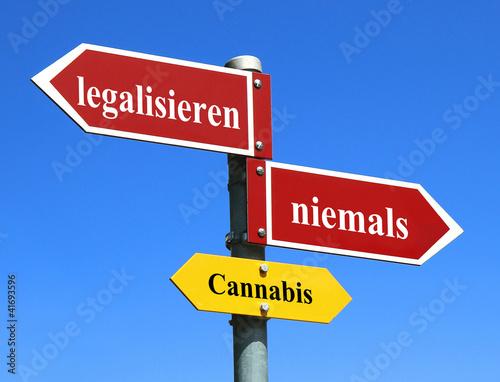 Cannabis / Hanf / Marihuana