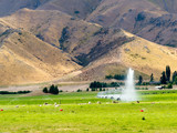 Irrigating lush farm pastures in central Otago, NZ