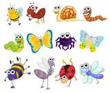 Fototapety creatures