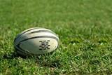 Ballon rugby