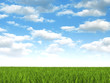 Nature background - meadow and blue sky