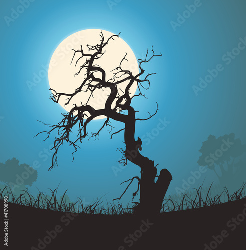 Dead Tree Silhouette In The Moonlight