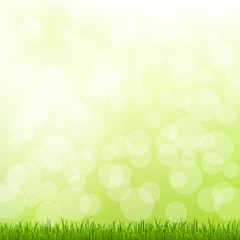 Green Grass And Bokeh