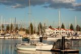 Yacht Marina in evening light
