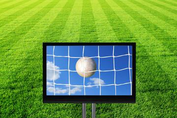 fussballfeld mit tv - tor