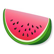 Watermelon illustration, isolated on white.