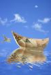 petits bateaux billets 50 € sur l'eau