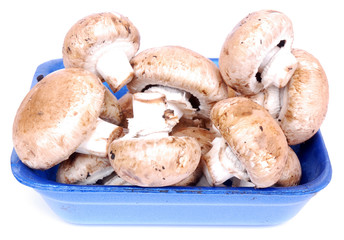 Portabellini mushrooms