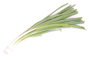 Bunch spring onions on white