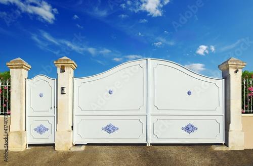 Portail et portillon bleus