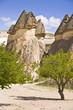 Cheminées de fées à Pasabag - Cappadoce - Turquie