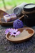 violette dayspa nature mis en