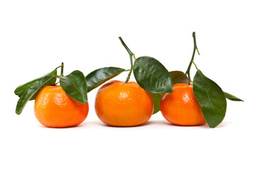 frische Mandarinen vor weissem Hintergrund