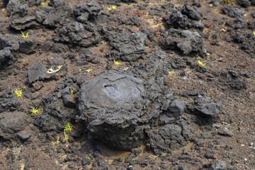 Bomba vulcânica