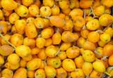 Fototapety Marula fruit