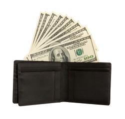 Dollar bills U.S. in leather purse