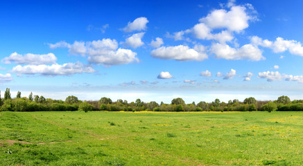 Panorama of sky and spring field