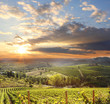 Leinwandbild Motiv Chianti vineyard landscape in Tuscany, Italy