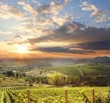 Fototapety Chianti vineyard landscape in Tuscany, Italy