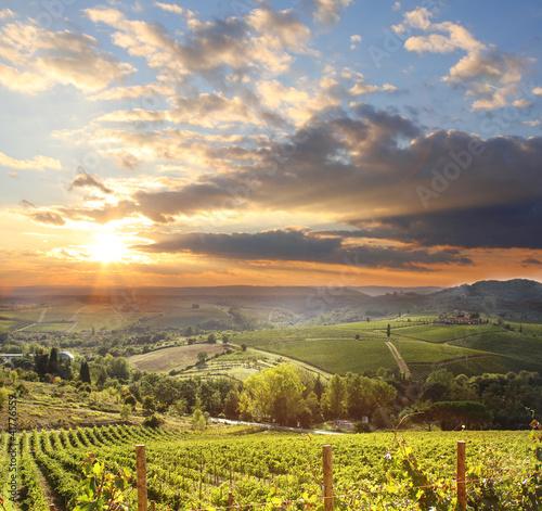 Zdjęcia na płótnie, fototapety na wymiar, obrazy na ścianę : Chianti vineyard landscape in Tuscany, Italy