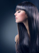 Fashion Brunette Girl. Healthy Long Hair
