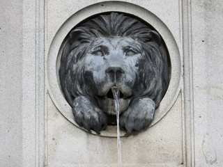 Lion fountain in Vienna