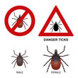 Tick warning sign, detailed illustration of ticks.