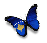 Flag of Kosovo butterfly, isolated on white poster
