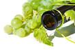 canvas print picture - Weinflasche mit Weinrebe