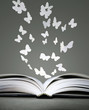 Open book and butterflies
