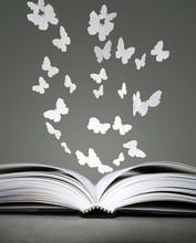 Offenes Buch und Schmetterlinge