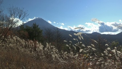Autumn Landscape in Mt.Fuji,Yamanashi,Japan