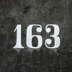 Nr. 163