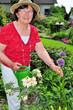Gärtnerin im Garten mit Zierlauch