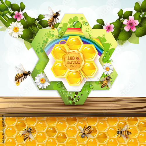 Bees and honeycombs with floral frame