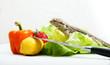 Bartagame mit Obst und Gemüse II