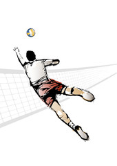 The Volleyball Player