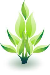Eco plant design