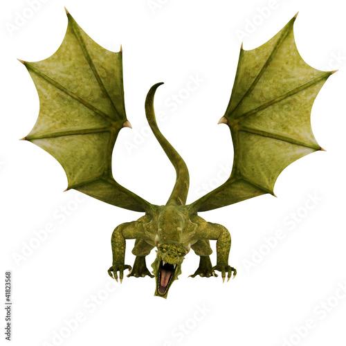 Foto op Plexiglas Draken green dragon front attack