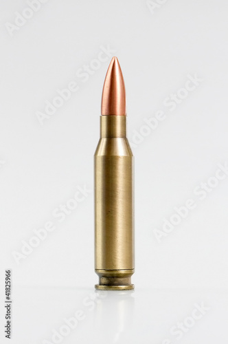 canvas print picture Ammo