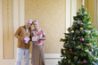 Senior couple with gift boxes by Christmas tree, smiling, portrait