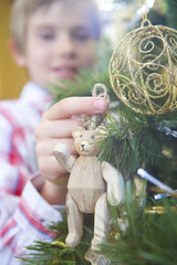 Boy (7-9) putting bear decoration on Christmas tree, close-up of decoration