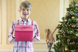 Portrait of boy (7-9) with pink gift box, sister(4-6) hanging decoration on Christmas tree in background